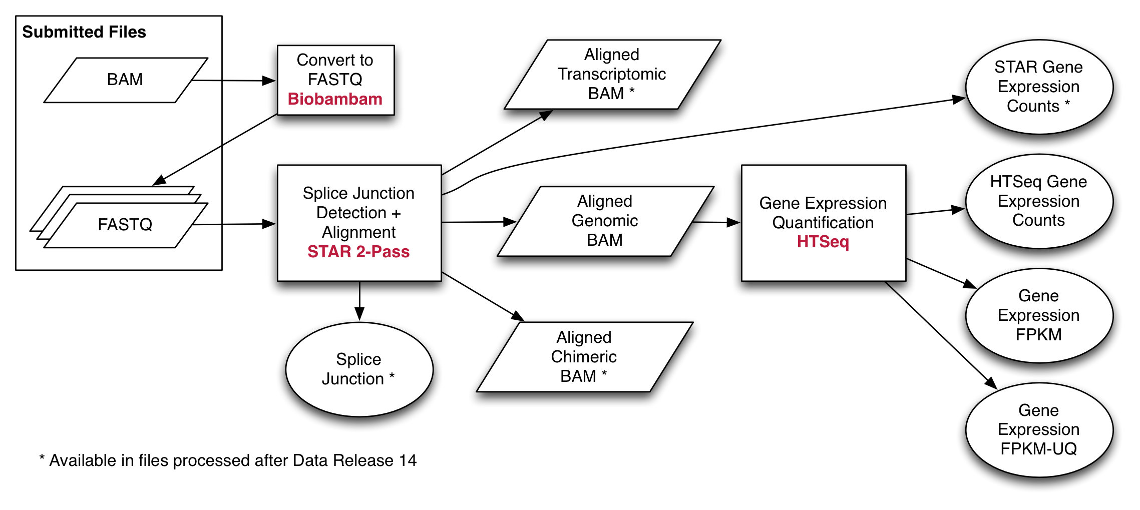 Bioinformatics Pipeline: mRNA Analysis - GDC Docs
